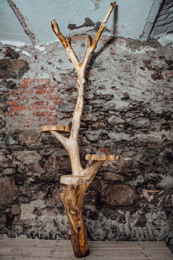 Baumstamm mit Ablagen aus Rundholz